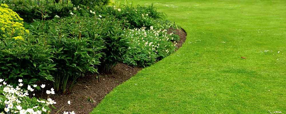 Comment couper vos bordures de pelouse ?