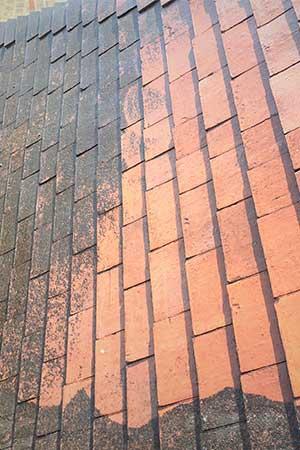 pulvérisateur traitement toiture